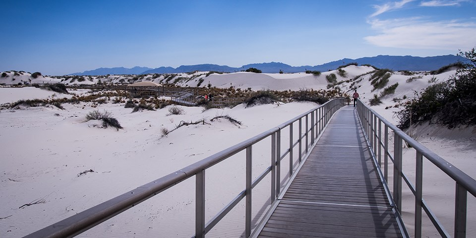 WHSA_interdune_boardwalk_2