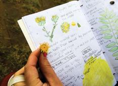 nature journaling nebraskaland magazine