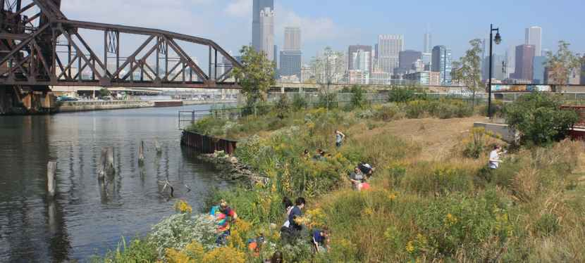 Chicago's Shedd Aquarium Connects Community Members andNature